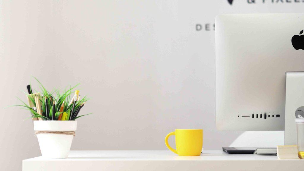 plant on white office desk