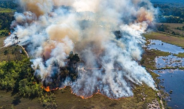 Thursley Common Fires drone shot